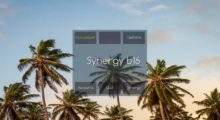 Hacked Client Synergy b16 for Minecraft 1.14/1.13.2