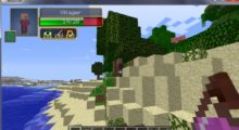 Damage Indicators Mod for Minecraft 1.13.2/1.12.2