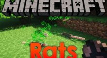Rats Mod for Minecraft 1.14.4/1.12.2