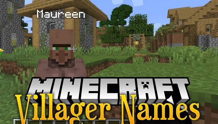Villager Names Mod for Minecraft 1.15.2/1.14.4/1.12.2