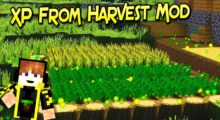 XP From Harvest Mod for Minecraft 1.15.2/1.15/1.14.4