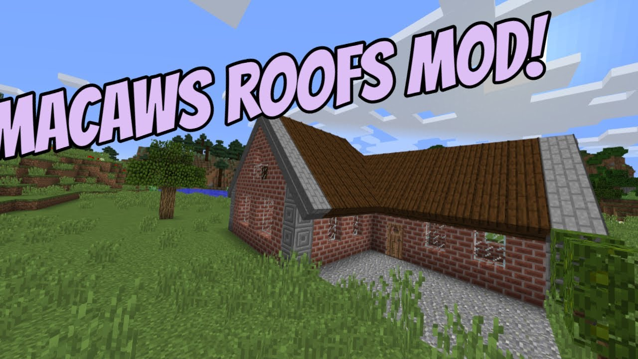 Macaw's Roofs 1