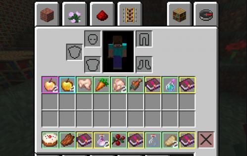 Minecraft visp mod