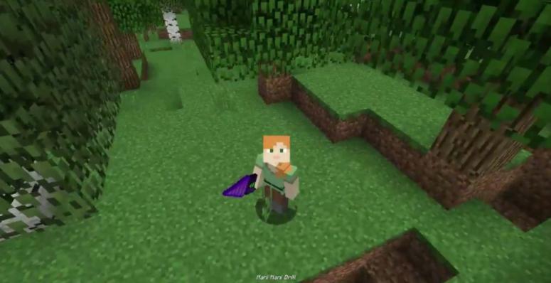 Minecraft 1.16.3 mod download