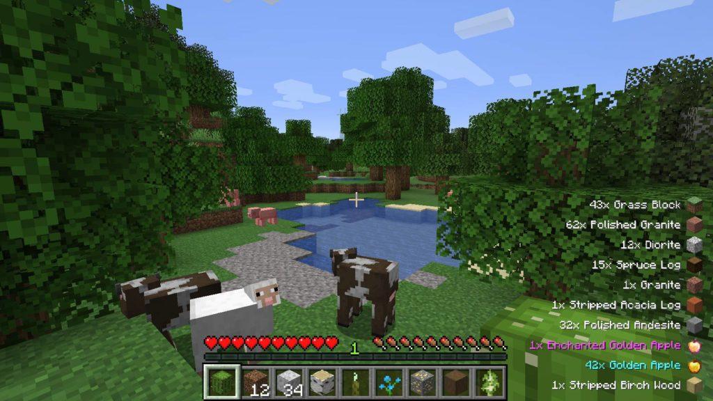Pick up items Minecraft
